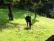 Zoo-Praha1-101.jpg